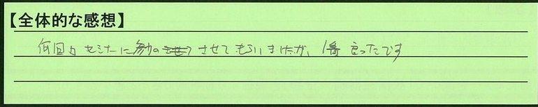 09zentai-kanagawakenyokohamashi-ty.jpg