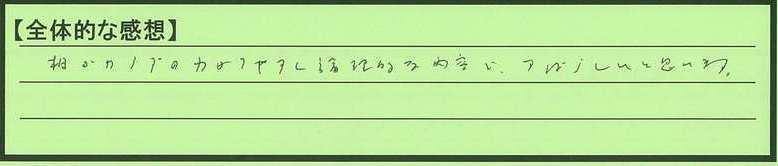 04zentai-tm.jpg