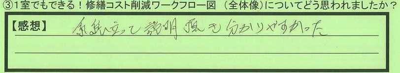 17flow-tokyotosetagayaku-nu.jpg